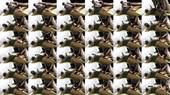 Rubber Bound Double Wanking - MY SLAVE HD Femdom Videos