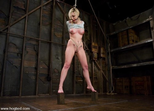 Samantha Sin, Matt Williams - Samantha Sin - Blond, Shaved, Toned, And A Former Gymnast - Now A First Time Bondage Model. (2008/HD)