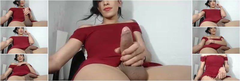 Unknown - Cam Show Various TGirls (SD)