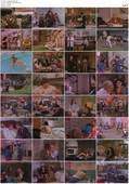 La Pulqueria (1981)