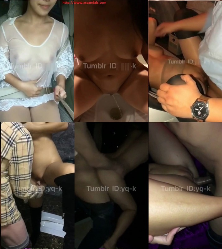 A_day_chinese_sex_tour_video_1 cover