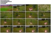 Naked Glamour Model Sensation  Nude Video - Page 7 5q17s44wbrj0
