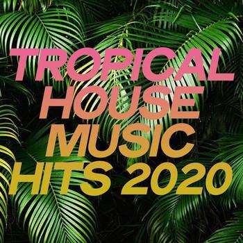 Tropical House Music Hits 2020 (2020) Full Albüm İndir