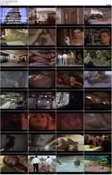 Joy in Honk Kong (1992)