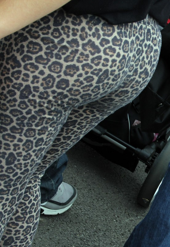 gorgeous college teen in leopard print leggings