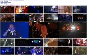 Bohse Onkelz - Waldstadion - Live in Frankfurt (2020) [BDRip 1080p]