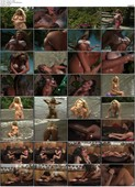 Penthouse: Sun, Surf and Centerfolds (1997)