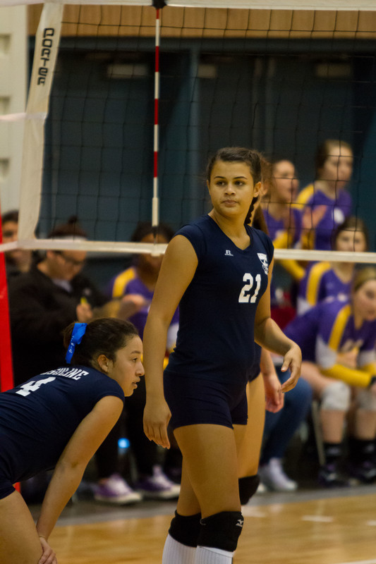 beautiful volleyball teens in tight lycra shorts