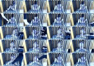 [Bondagelife] - Rachel Greyhound, Sasha Darling - Caged creature (2021 / HD 720p)