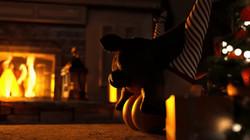 Jackerman - Animation Collection