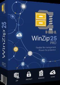 WinZip Pro 25.0 Build 14273 (x32-x64)